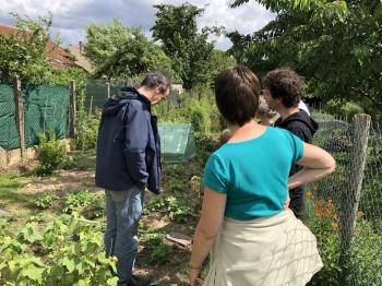 jardin 2018-06-06 (4).jpg